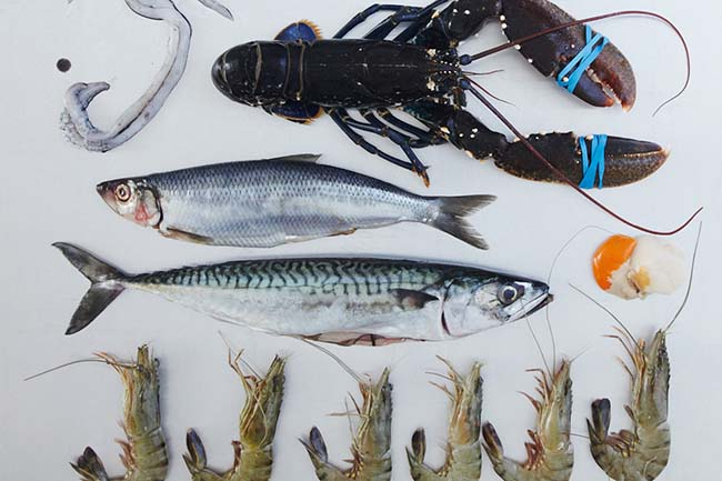 3. The ultimate fish and shellfish class cooking experiences